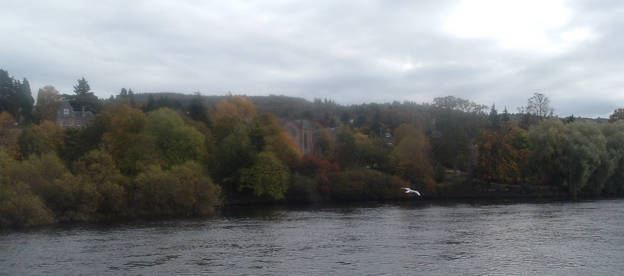 Riverbank trees and Church